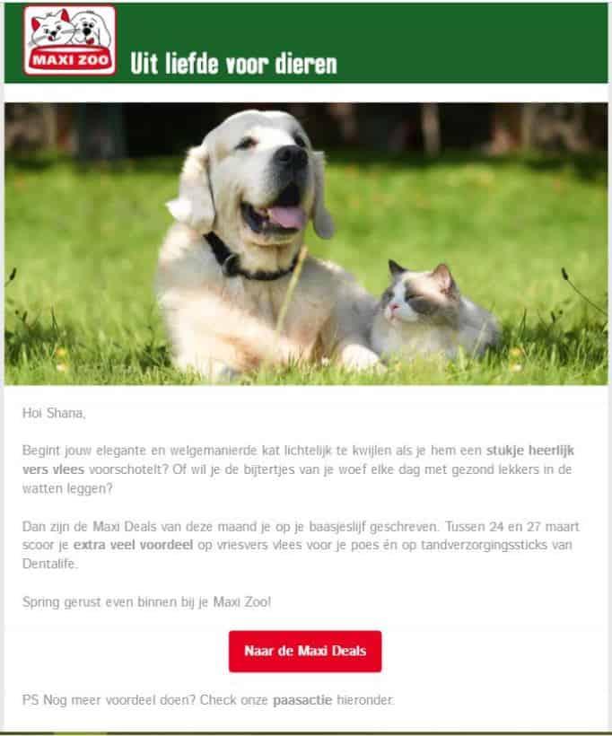 realisatie Maxi Zoo - mailing Pasen - Het Schrijfpaleis