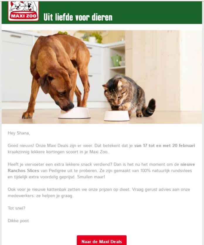 Realisatie Maxi Zoo - mailing - Het Schrijfpaleis