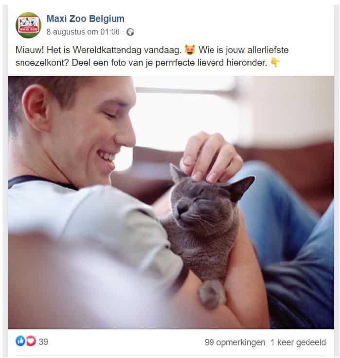 Realisatie Facebook-post Maxi Zoo