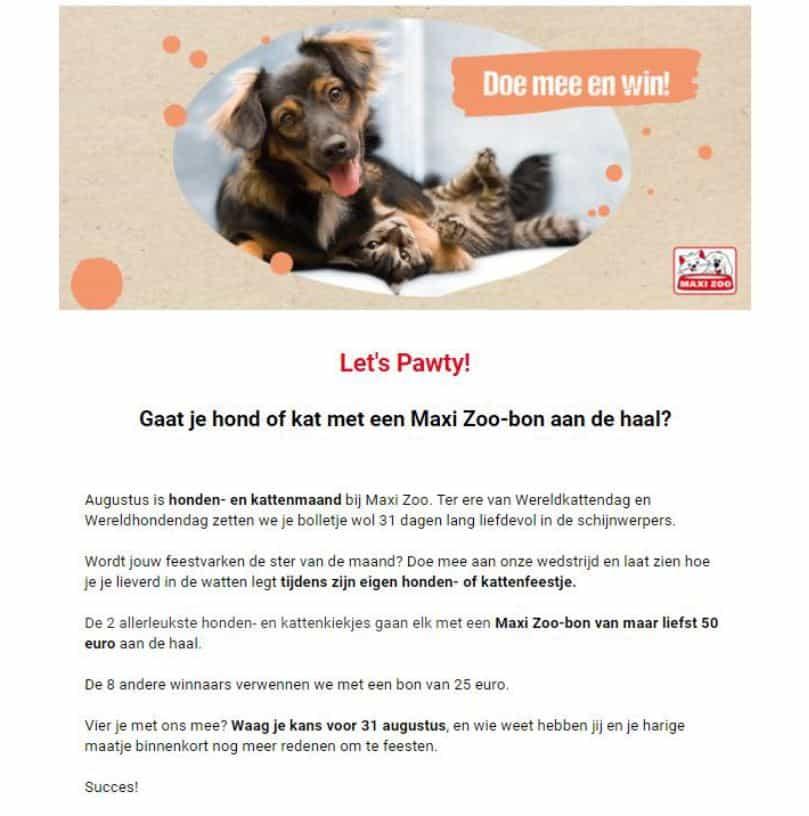 Realisatie wedstrijdcopy Maxi Zoo - Het Schrijfpaleis